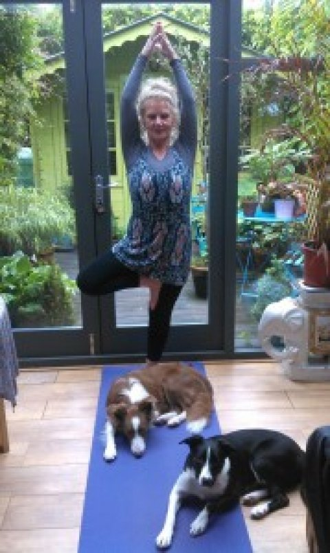 Yoga, dogs and the retired person