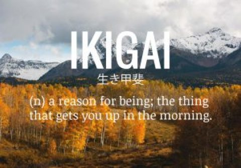 Retirement and your Ikigai