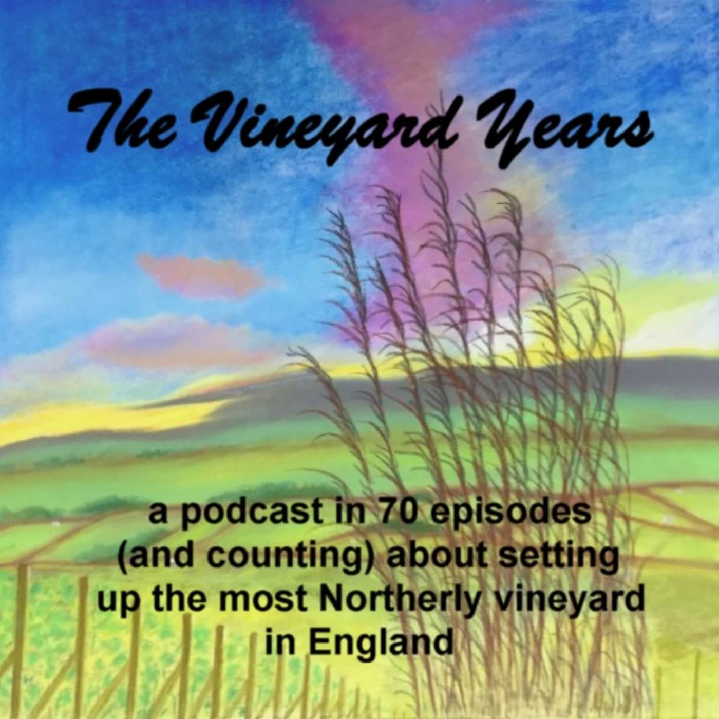 The Vineyard Years Podcast